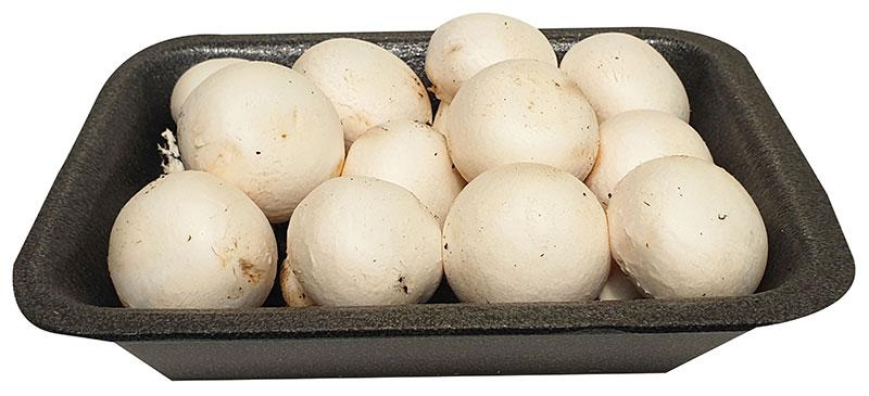 fungocesena_prodotti_champignon_cesena_baby_250_grammi