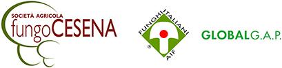 Fungo Cesena – Coltiviamo con passione