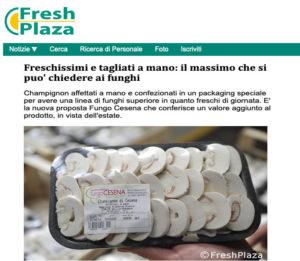 fungo_cesena_freshplaza_06_06_19