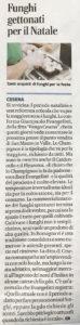 fungo_cesena_corriere_romagna_08_12_19