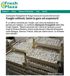 fungo_cesena_freshplaza_10.12.19